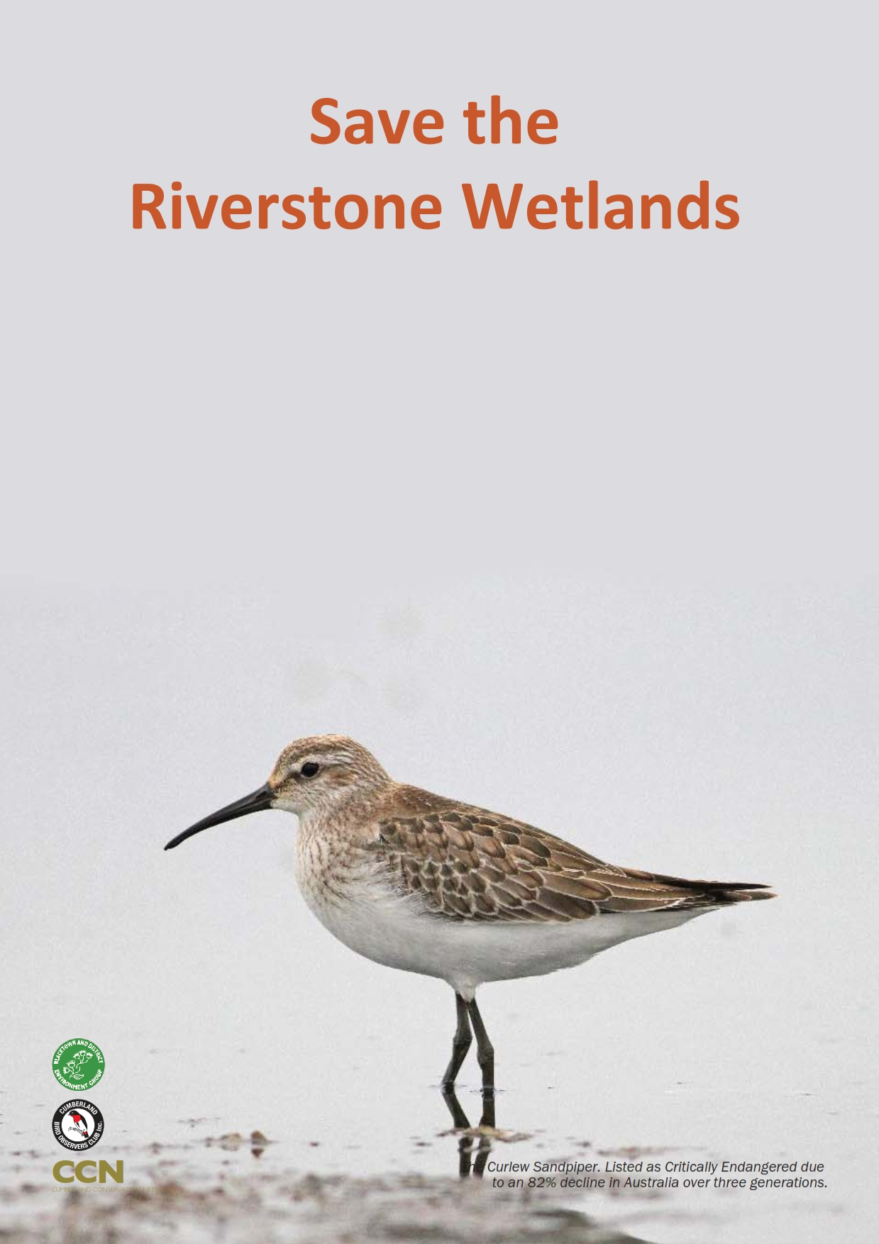 Save Riverstone Wetlands_001