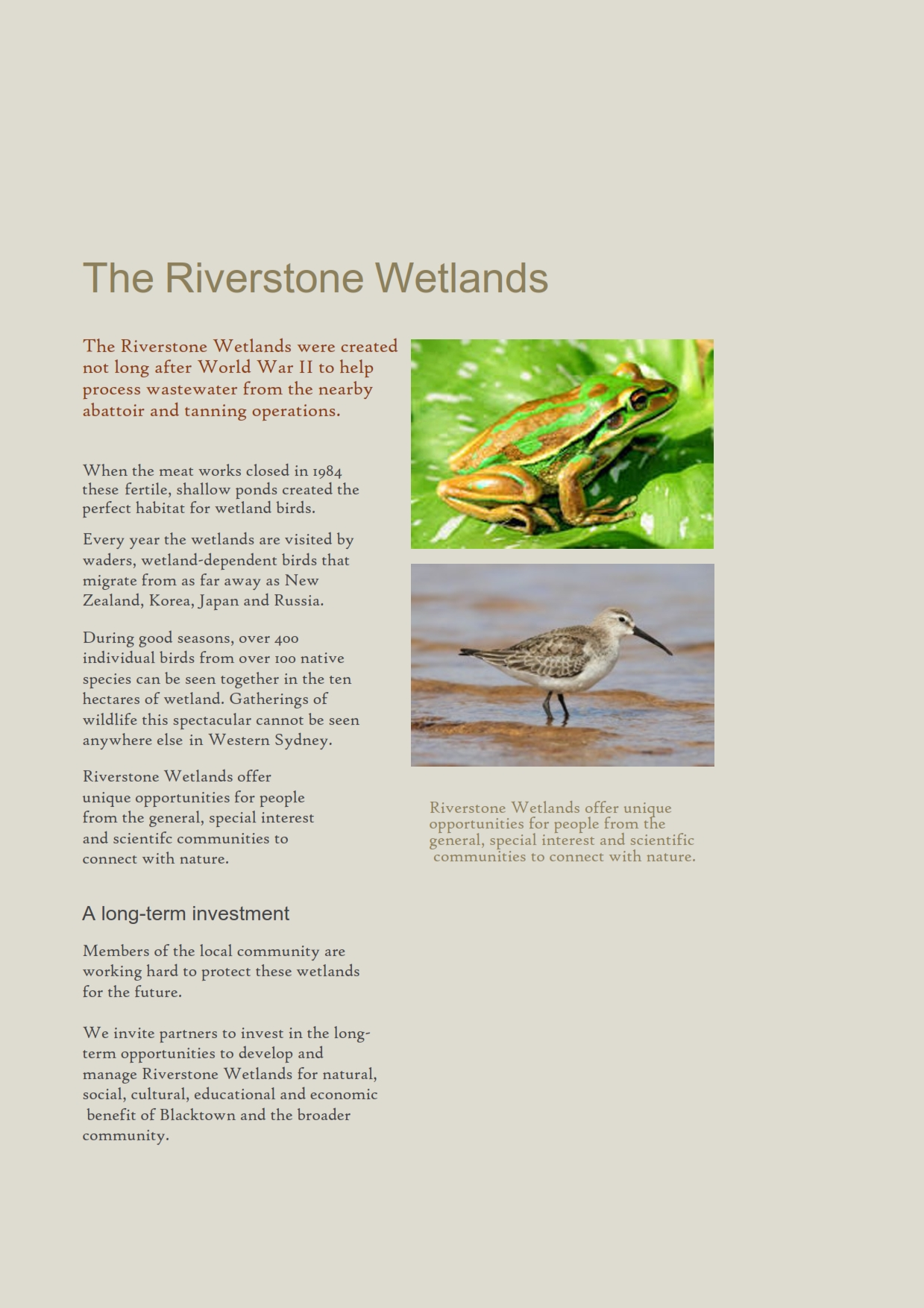 Save Riverstone Wetlands_002